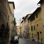 img 2888 150x150 - Un dia en Siena