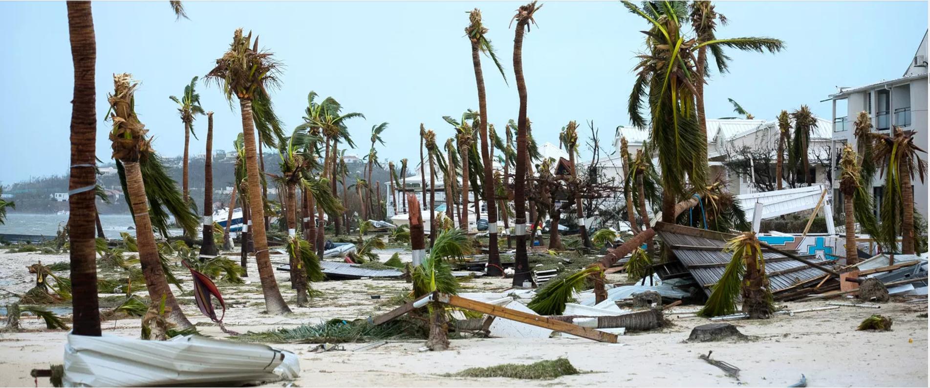 playa - Viajar  o no al Caribe o a Miami después del Huracán Irma.