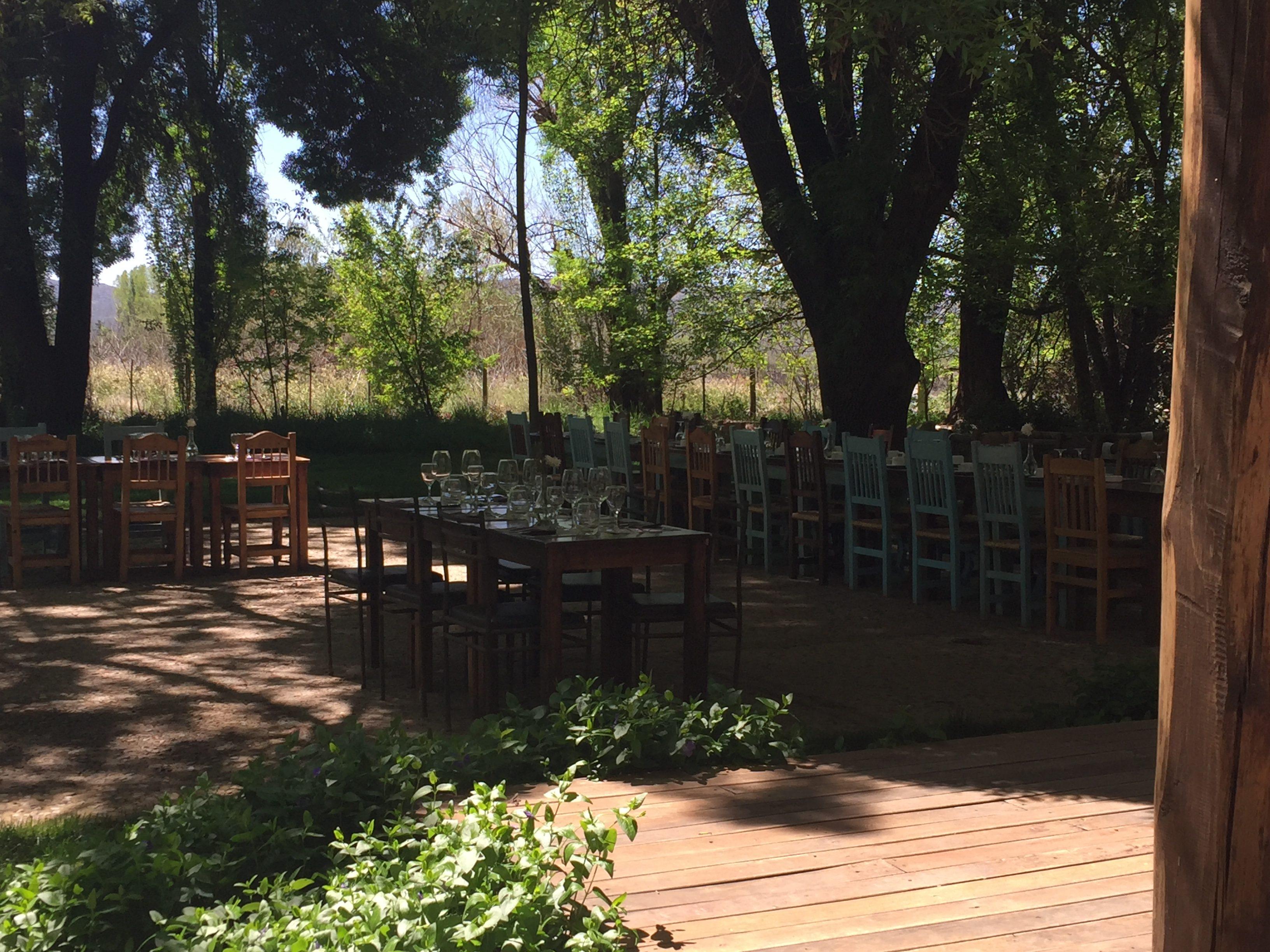 IMG 8361 e1508807108655 - Almorzando en la Bodega Atamisque de Mendoza