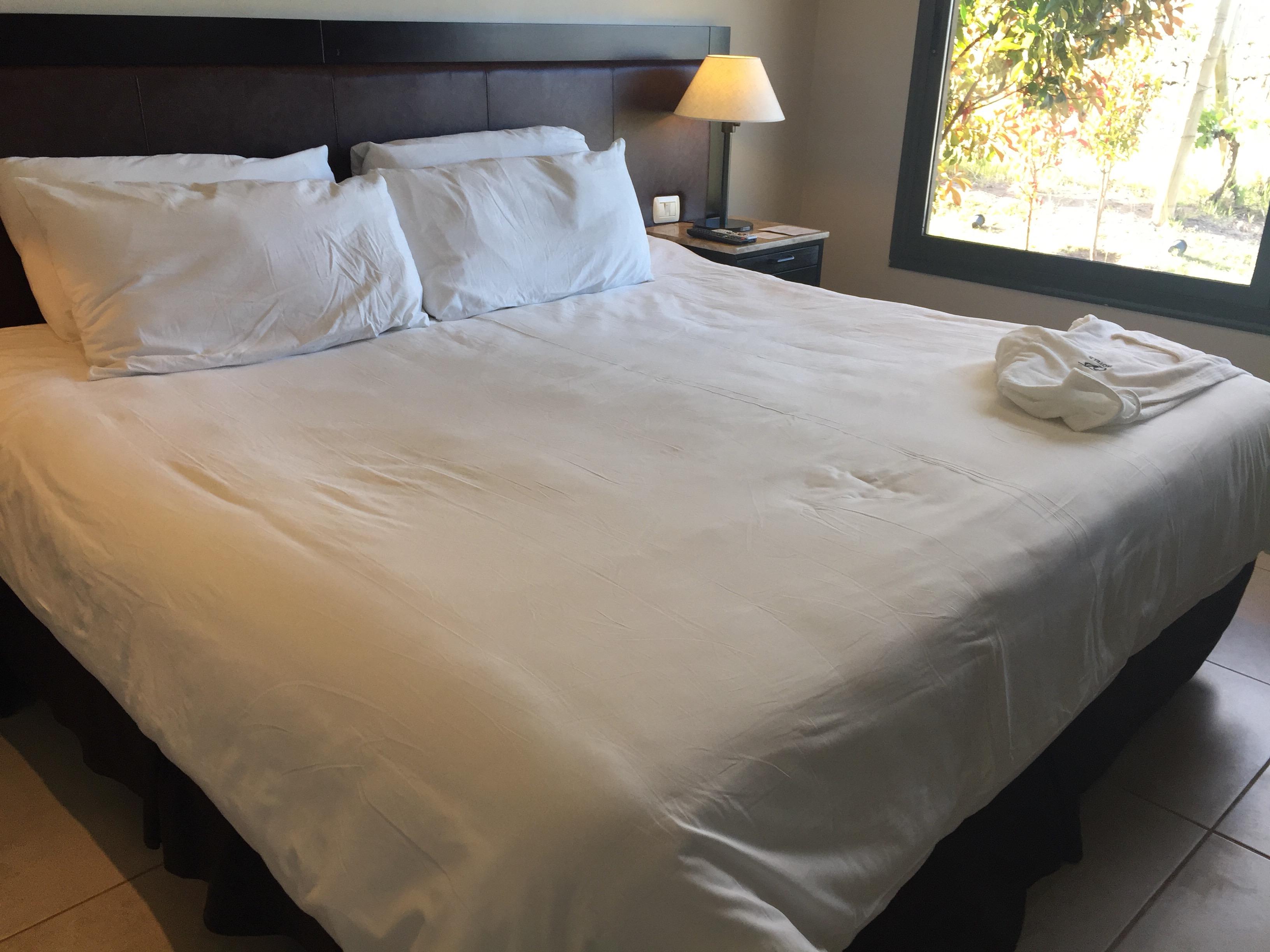 img 8902 - Hotel Auberge du Vin en Mendoza