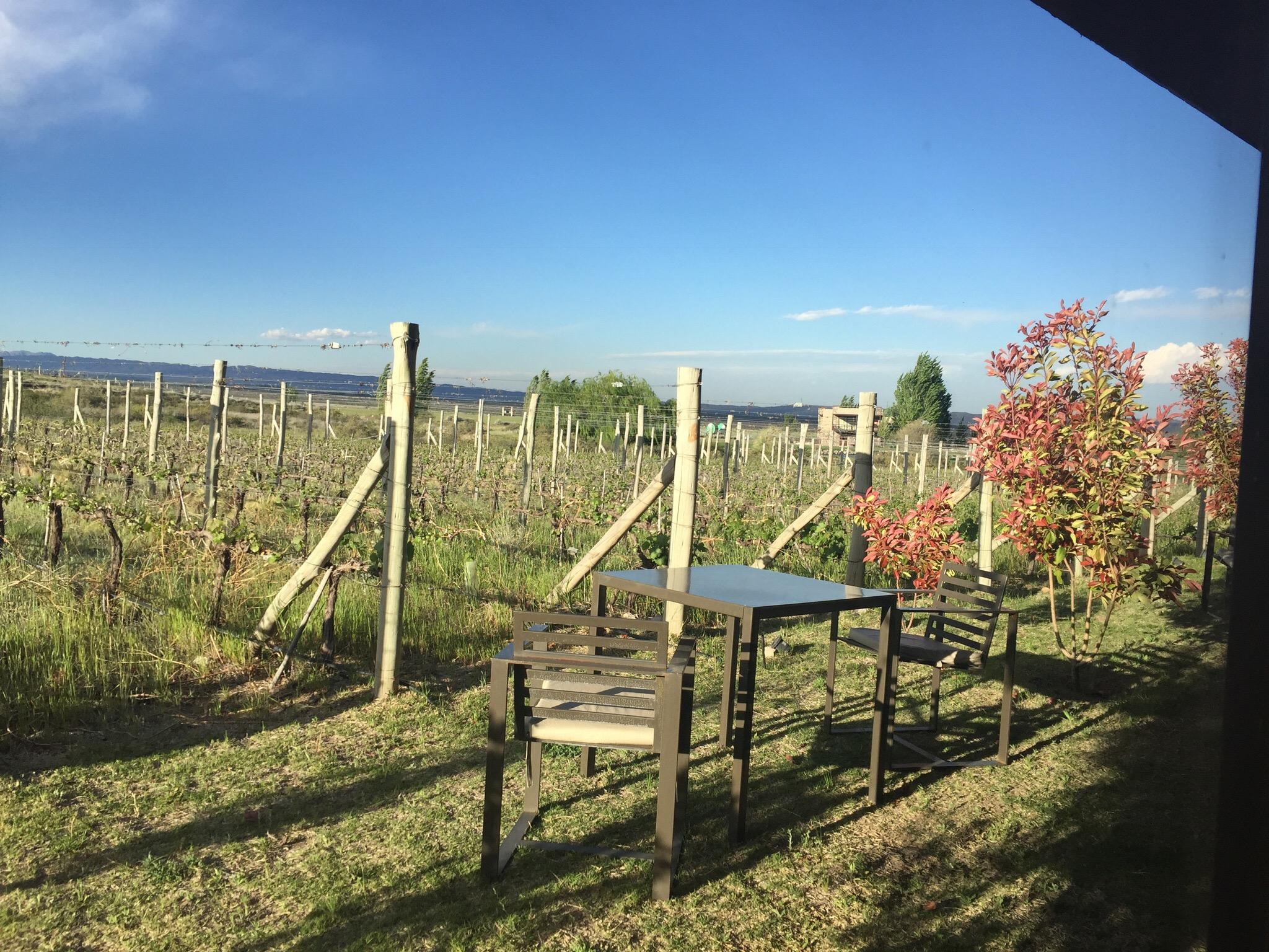 img 8920 - Hotel Auberge du Vin en Mendoza