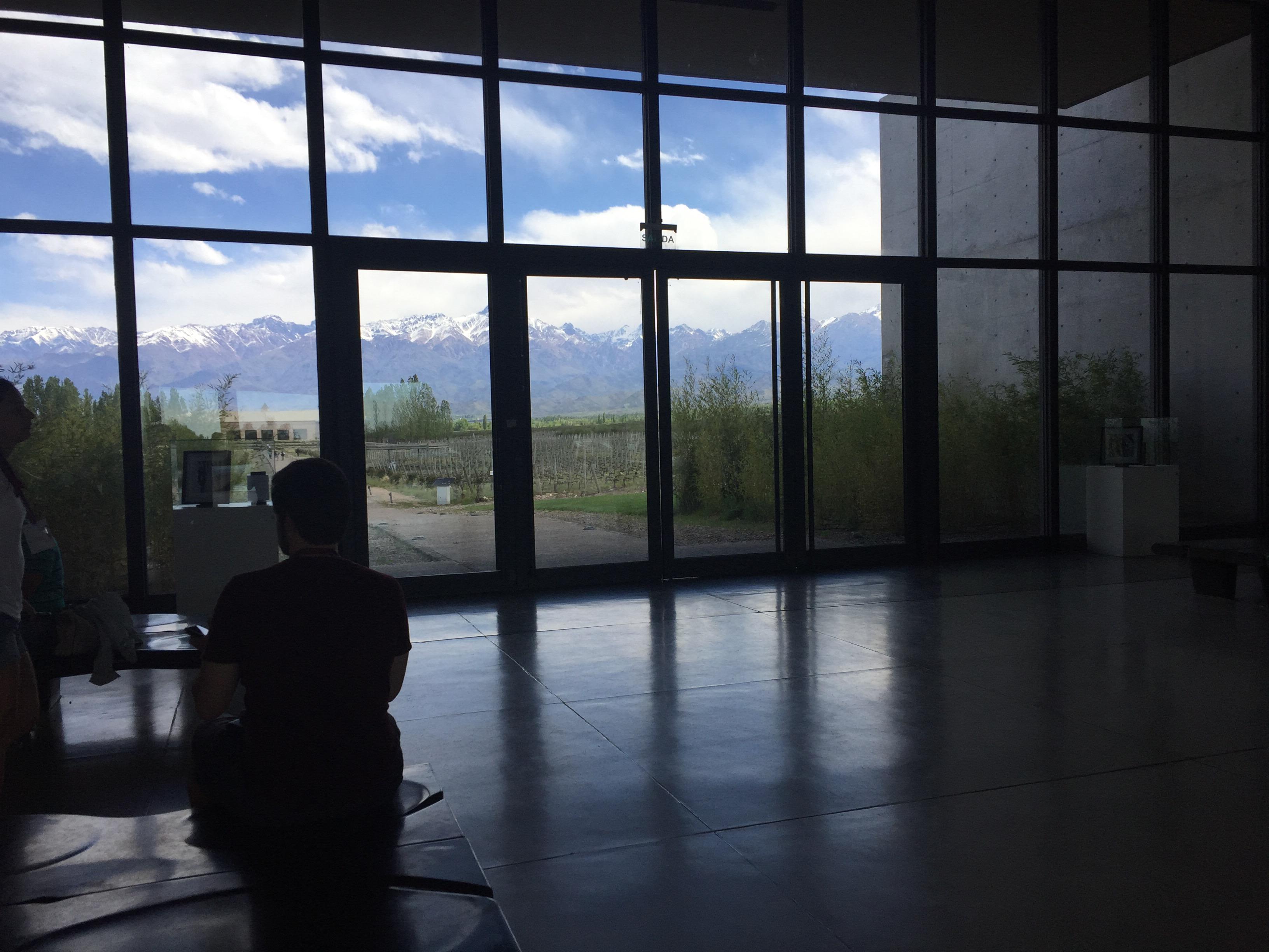 img 8824 - Paseando por la Bodega Salentein en Mendoza