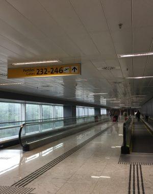 img 9597 300x380 - Cambio de Terminales en Guarulhos (San Pablo) para los vuelos regionales y sus caóticas consecuencias