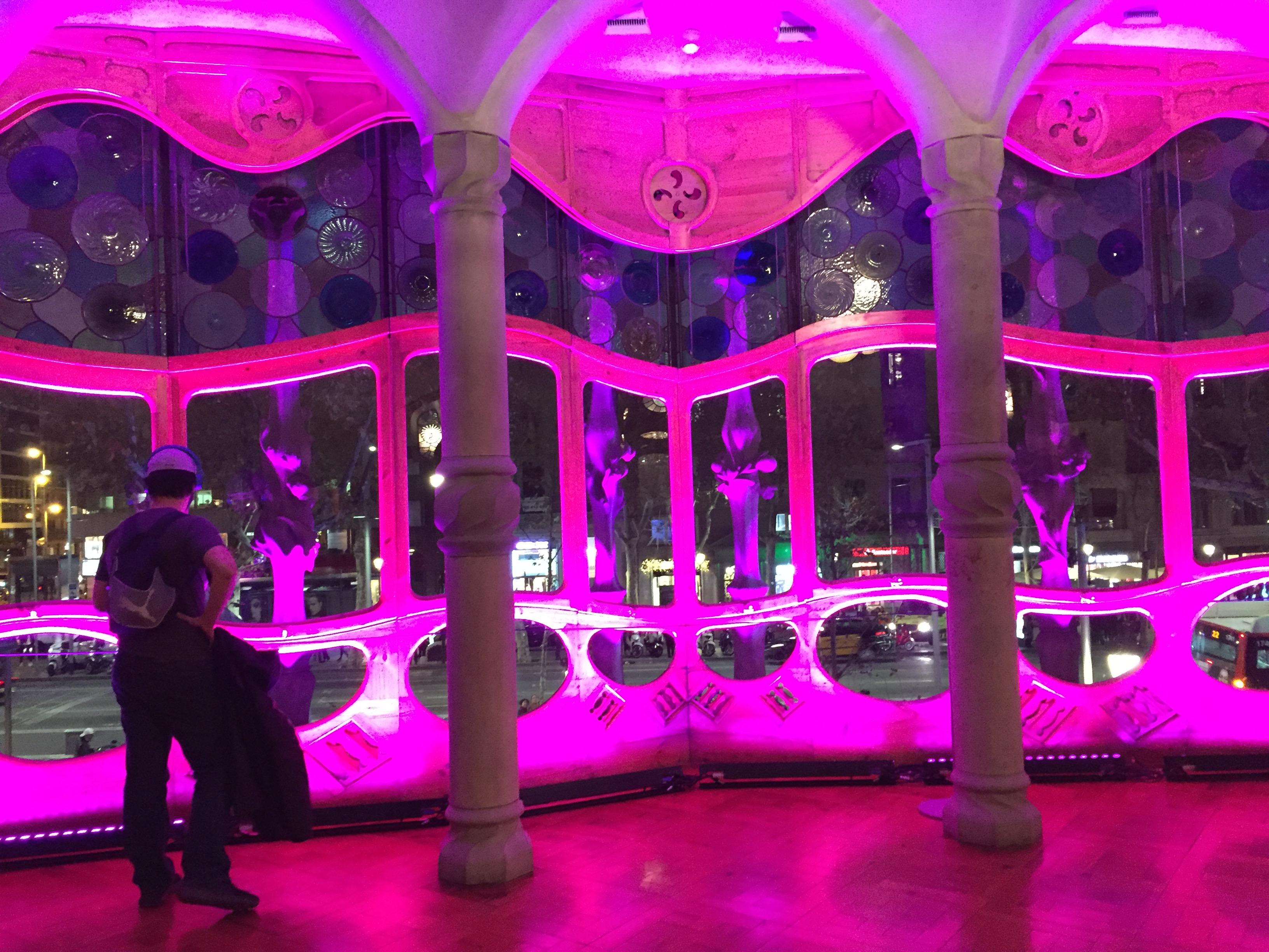 IMG 0840 - Visita a la Casa Batlló en Barcelona Parte I/II