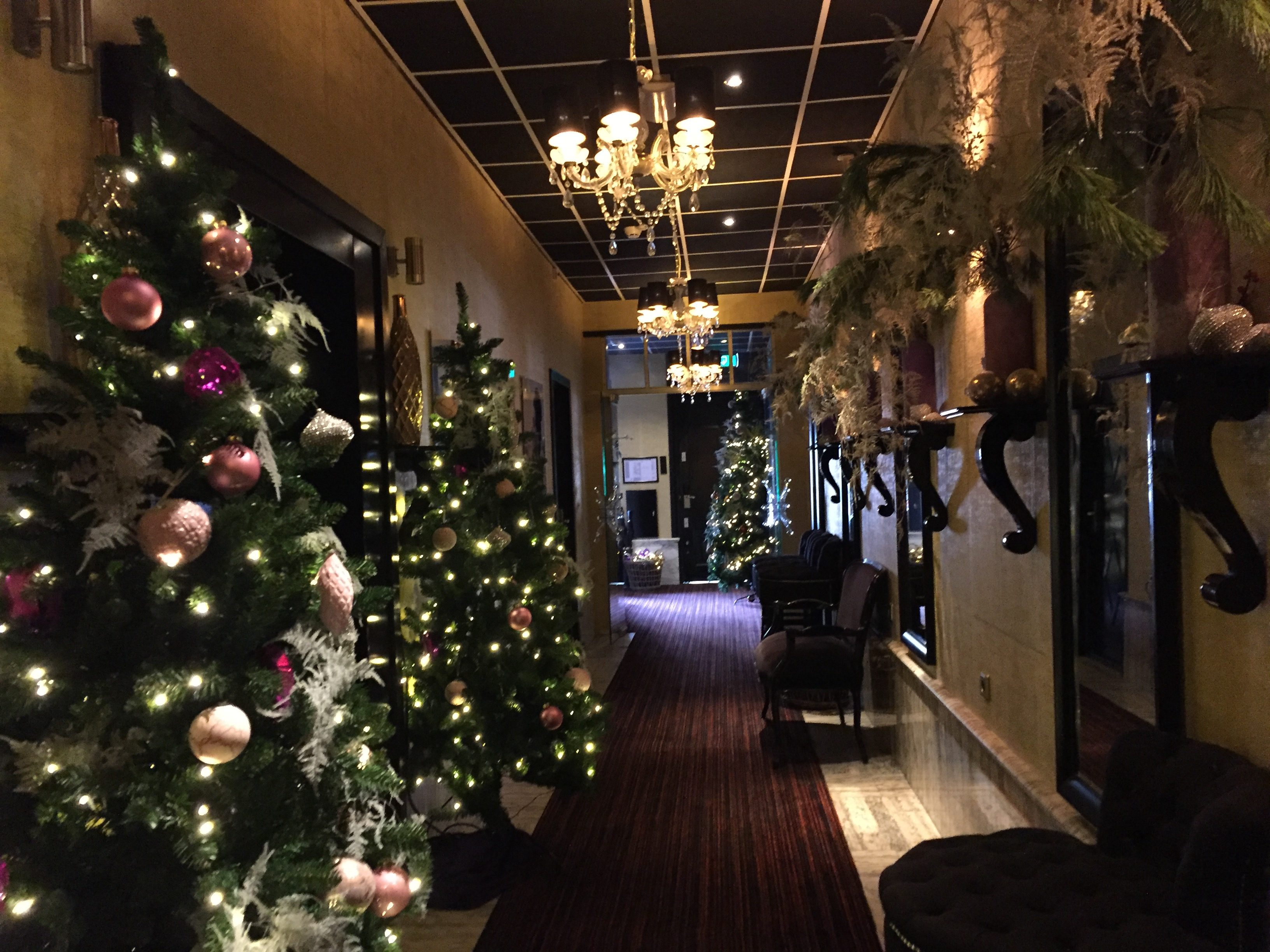 IMG 0336 e1527115844286 - El Hotel Sebastian's en Amsterdam