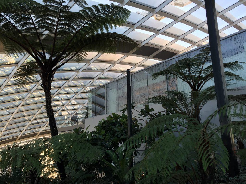 IMG 2458 1024x768 - El mirador Sky Garden en Londres