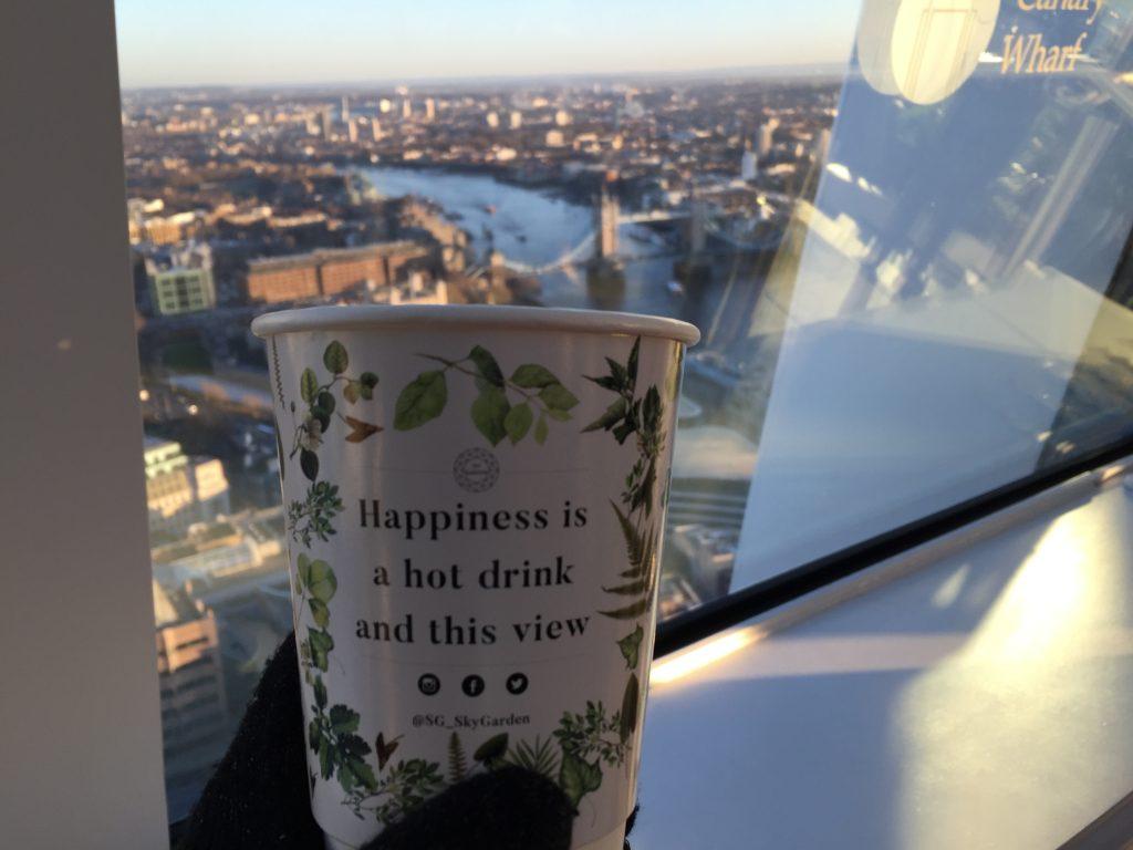 IMG 2465 1024x768 - El mirador Sky Garden en Londres
