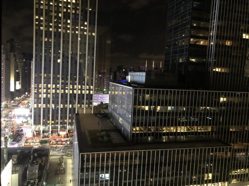 img 3745 e1538617073333 1024x768 - El Hotel Reinassence en New York