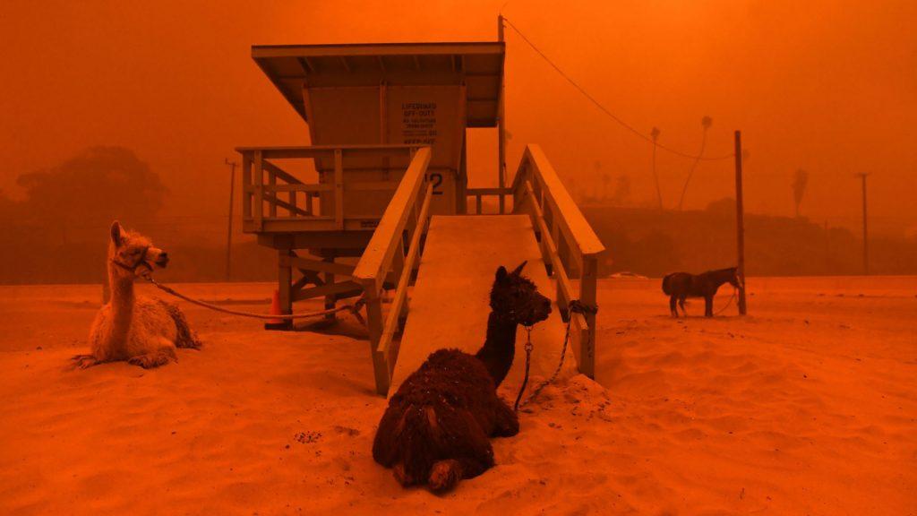 1541888830604 1024x576 - Incendios en California, ¿Qué hacer antes de viajar?