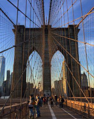 IMG 0039 300x380 - Qué ver y que visitar en Brooklyn