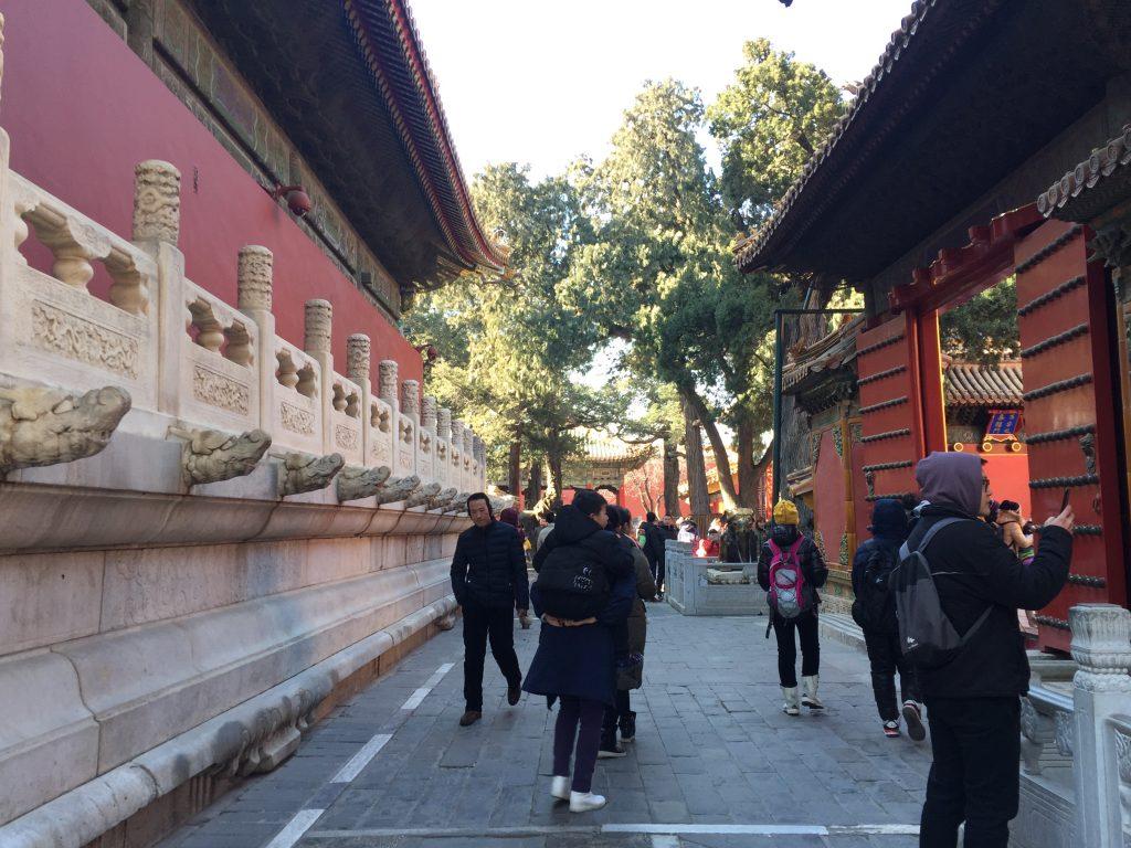 IMG 3896 e1548038617526 1024x768 - Visitando la Ciudad Prohibida en Beijing - Tips y Consejos (MegaPost)