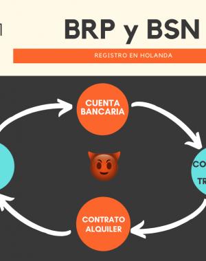 BRP y BSN Holanda 300x380 - Como obtener el BSN en Holanda (venciendo al circulo maléfico de la muerte)